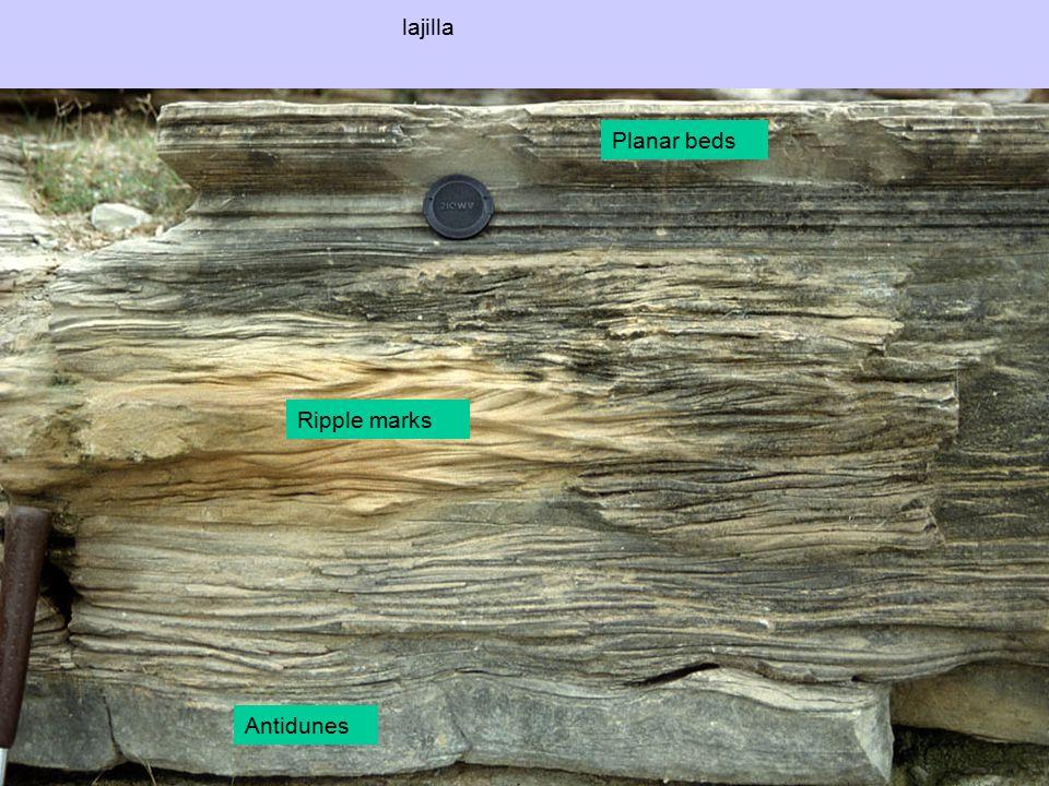 lajilla Planar beds Ripple marks Antidunes