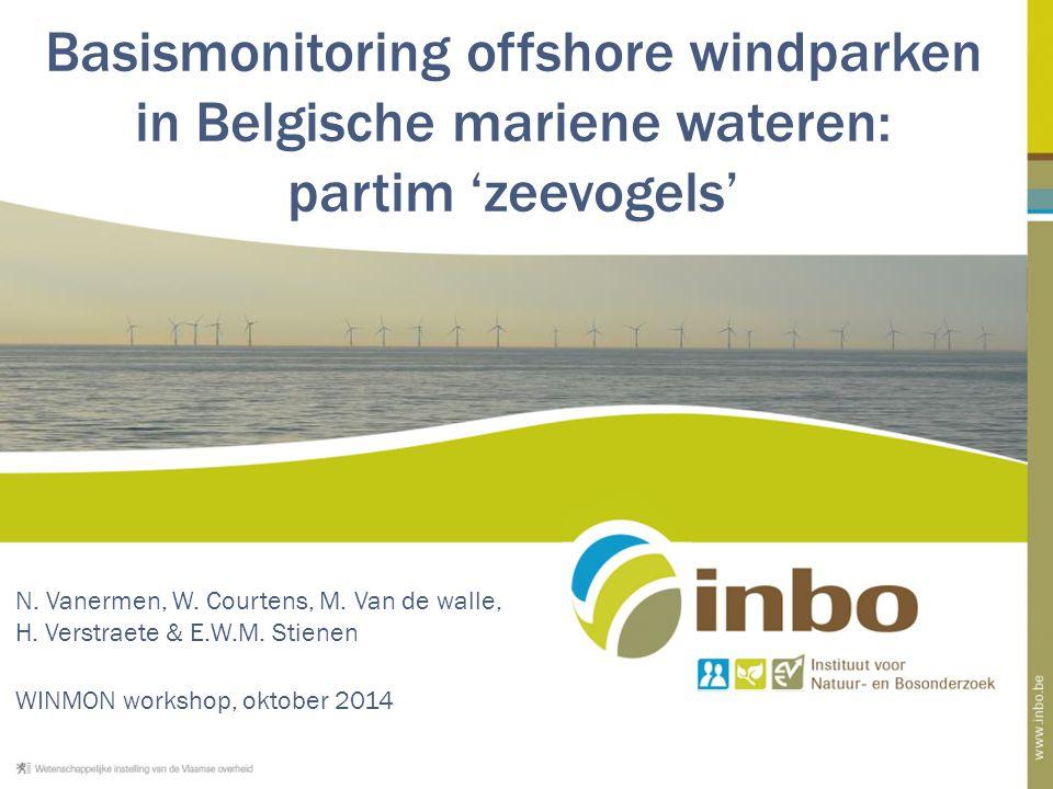 Basismonitoring offshore windparken in Belgische mariene wateren: partim 'zeevogels' N.