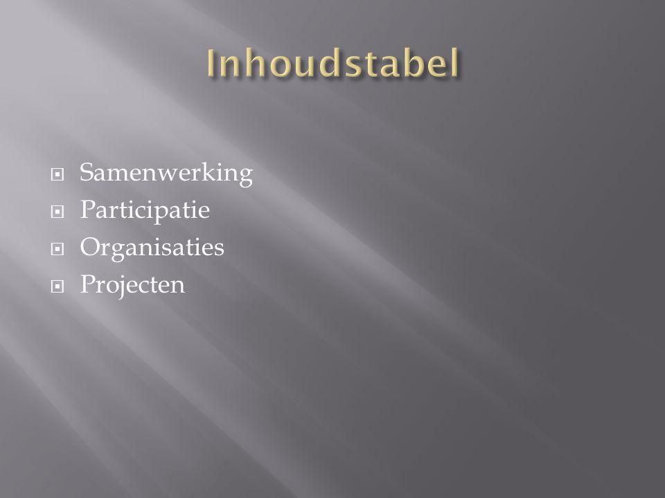  Samenwerking  Participatie  Organisaties  Projecten