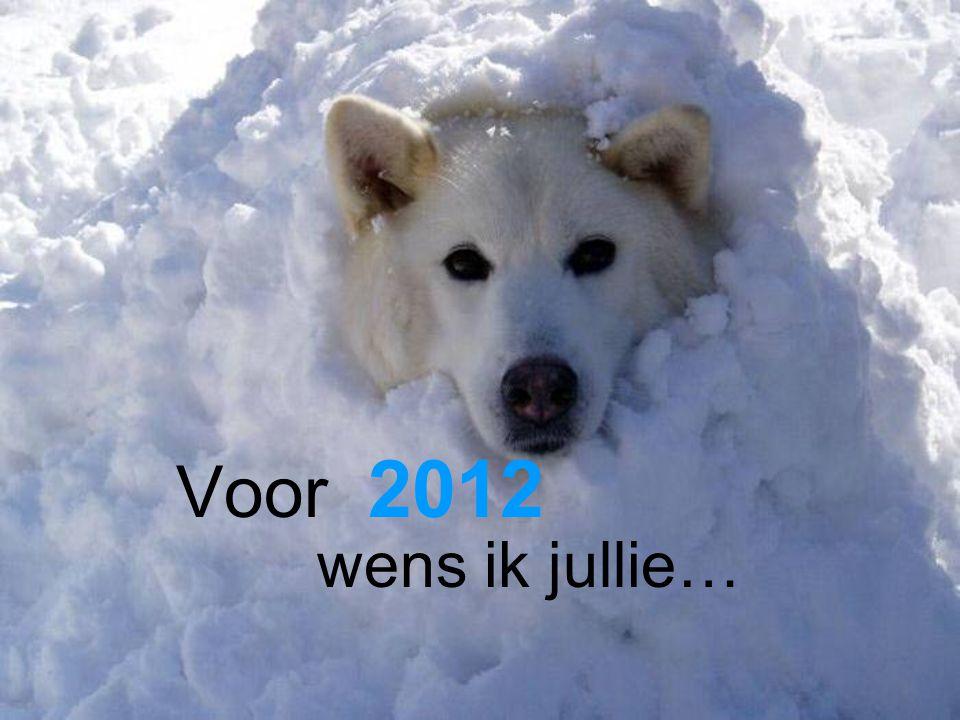 Voor 2012 wens ik jullie…