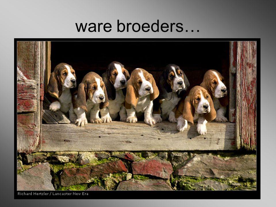 ware broeders…