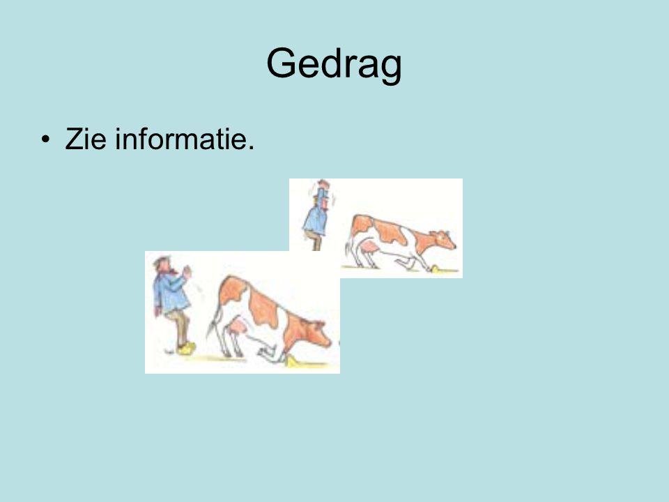Gedrag Zie informatie.