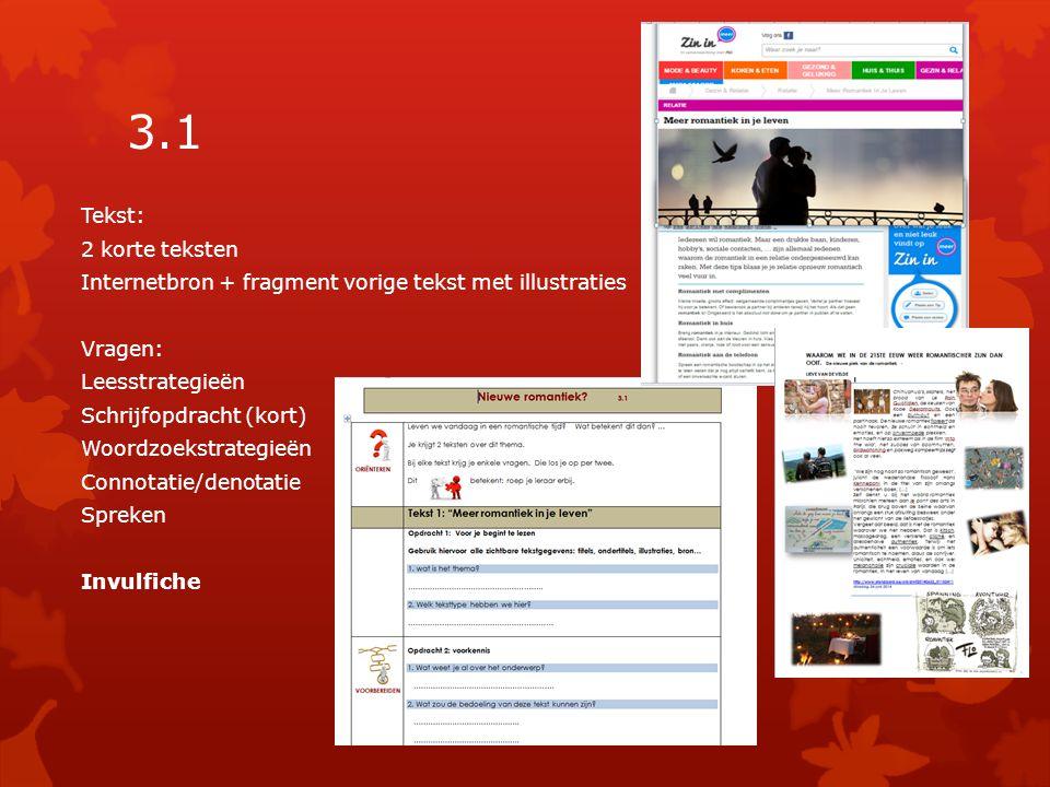 3.1 Tekst: 2 korte teksten Internetbron + fragment vorige tekst met illustraties Vragen: Leesstrategieën Schrijfopdracht (kort) Woordzoekstrategieën Connotatie/denotatie Spreken Invulfiche