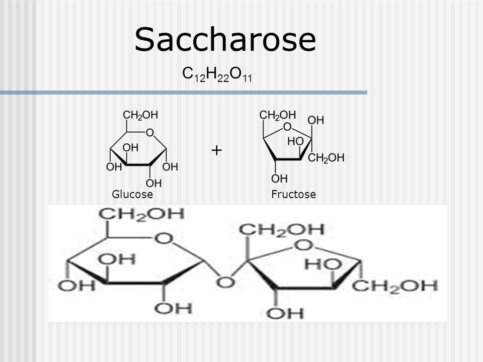 Saccharose C 12 H 22 O 11 + Glucose Fructose