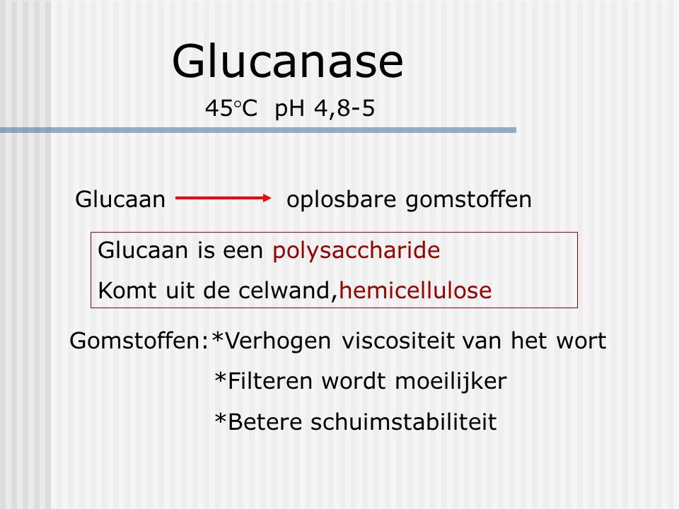 Glucanase Glucaan oplosbare gomstoffen Glucaan is een polysaccharide Komt uit de celwand,hemicellulose Gomstoffen:*Verhogen viscositeit van het wort *