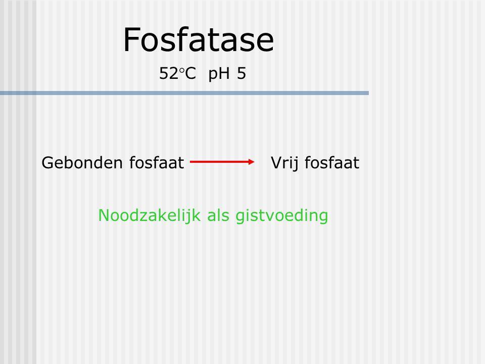 Fosfatase 52°C pH 5 Gebonden fosfaat Vrij fosfaat Noodzakelijk als gistvoeding