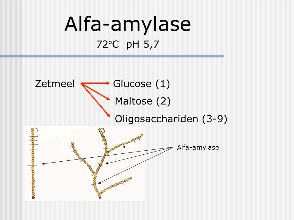 Alfa-amylase 72°C pH 5,7 Zetmeel Glucose (1) Maltose (2) Oligosacchariden (3-9) Alfa-amylase