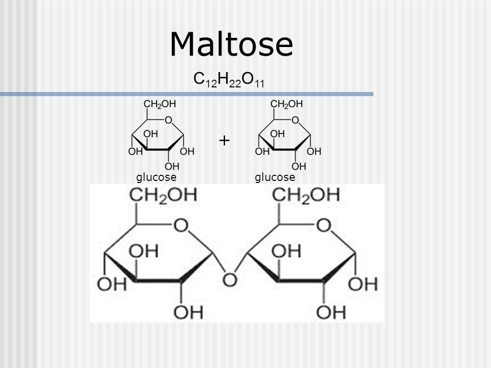 Maltose + glucose C 12 H 22 O 11