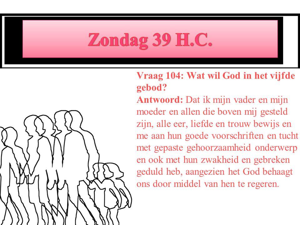 Vraag 104: Wat wil God in het vijfde gebod.