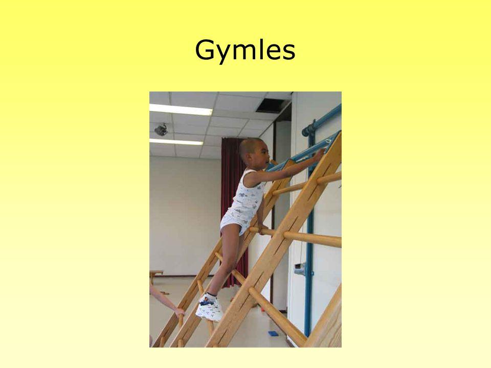 Andere activiteiten Excursies Schrijfdans Televisie kijken Drama Gymles Spelles Tjoepie (luistervaardigheidsprogramma)