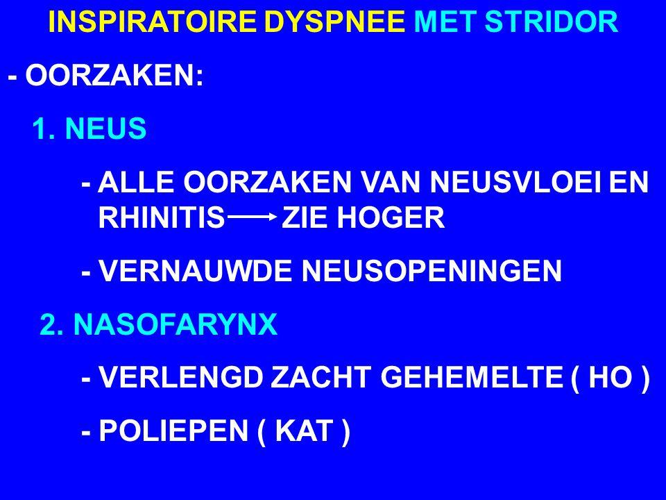 INSPIRATOIRE DYSPNEE MET STRIDOR - OORZAKEN: 3.