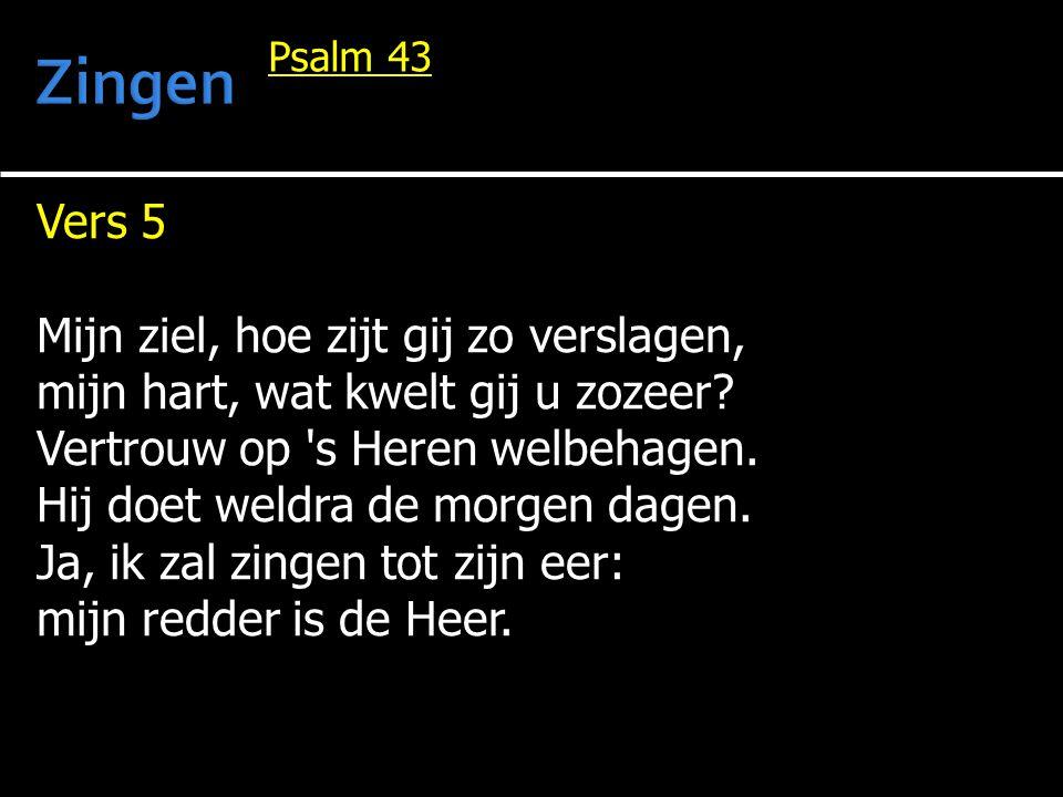 Vers 5 Mijn ziel, hoe zijt gij zo verslagen, mijn hart, wat kwelt gij u zozeer.