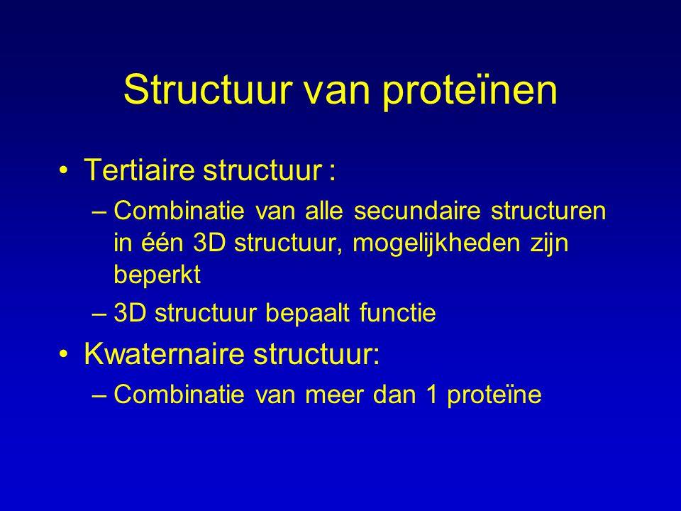 Structuur van proteïnen Tertiaire structuur : –Combinatie van alle secundaire structuren in één 3D structuur, mogelijkheden zijn beperkt –3D structuur bepaalt functie Kwaternaire structuur: –Combinatie van meer dan 1 proteïne