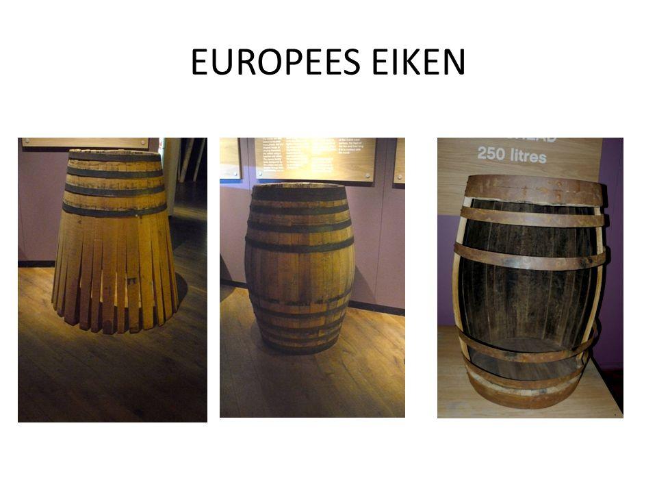 EUROPEES EIKEN