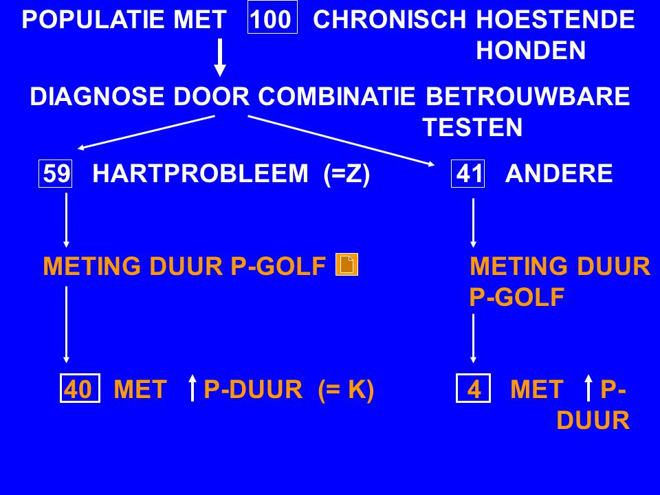 POPULATIE MET 100 CHRONISCH HOESTENDE HONDEN DIAGNOSE DOOR COMBINATIE BETROUWBARE TESTEN 59 HARTPROBLEEM (=Z) 41 ANDERE METING DUUR P-GOLF METING DUUR P-GOLF 40 MET P-DUUR (= K) 4 MET P- DUUR
