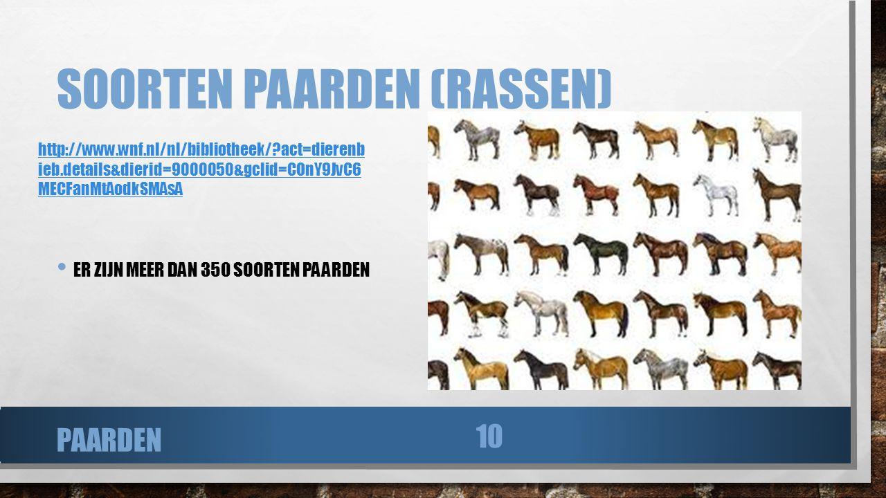 SOORTEN PAARDEN (RASSEN) ER ZIJN MEER DAN 350 SOORTEN PAARDEN PAARDEN 10 http://www.wnf.nl/nl/bibliotheek/?act=dierenb ieb.details&dierid=9000050&gcli