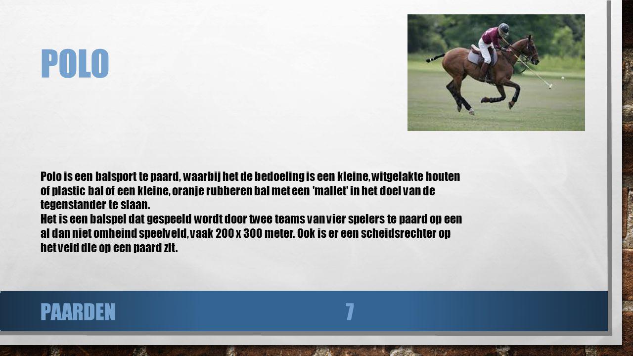POLO Polo is een balsport te paard, waarbij het de bedoeling is een kleine, witgelakte houten of plastic bal of een kleine, oranje rubberen bal met ee