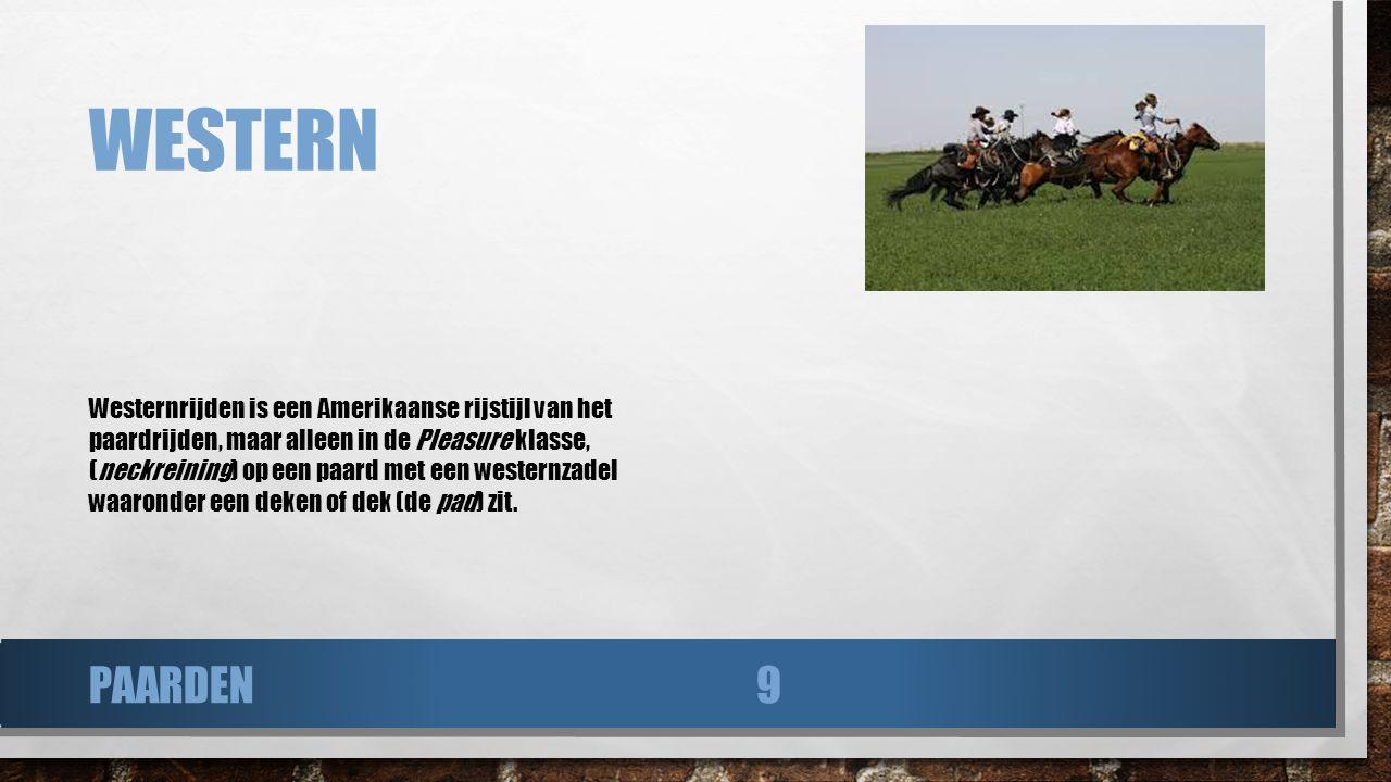 WESTERN Westernrijden is een Amerikaanse rijstijl van het paardrijden, maar alleen in de Pleasure klasse, (neckreining) op een paard met een westernza
