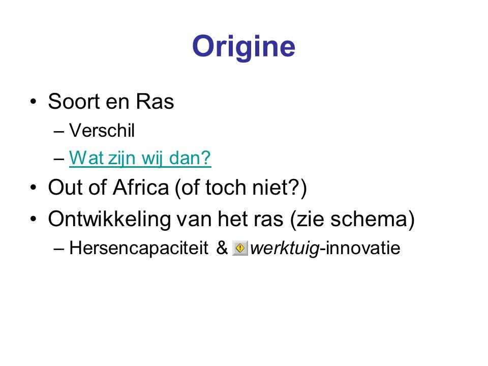 Origine Soort en Ras –Verschil –Wat zijn wij dan?Wat zijn wij dan? Out of Africa (of toch niet?) Ontwikkeling van het ras (zie schema) –Hersencapacite