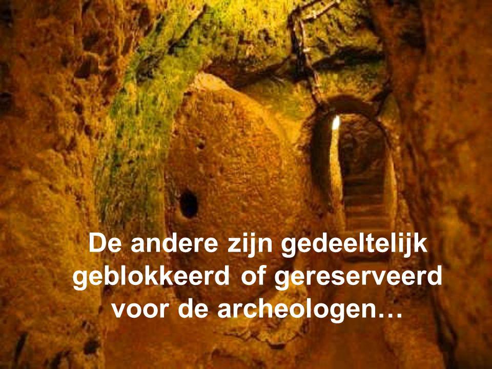 De andere zijn gedeeltelijk geblokkeerd of gereserveerd voor de archeologen…