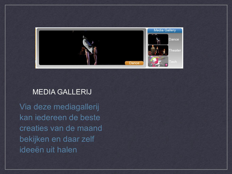 Via deze mediagallerij kan iedereen de beste creaties van de maand bekijken en daar zelf ideeën uit halen MEDIA GALLERIJ