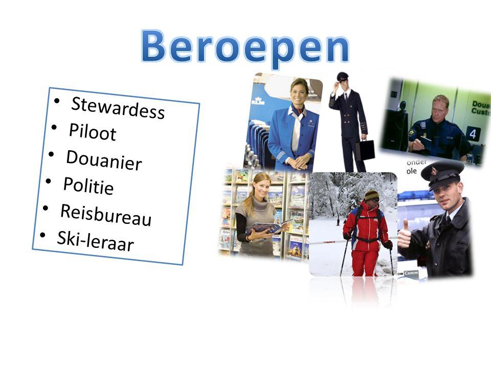Stewardess Piloot Douanier Politie Reisbureau Ski-leraar