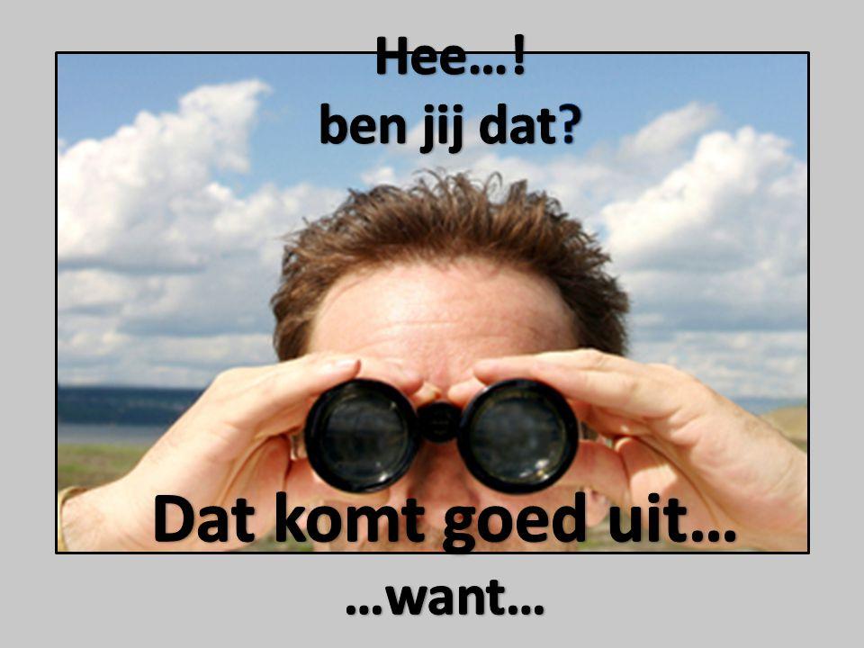Wij zijn Anja Kerkdijk, Annette Nijland en Annita Brokelman en wij zoeken jou.