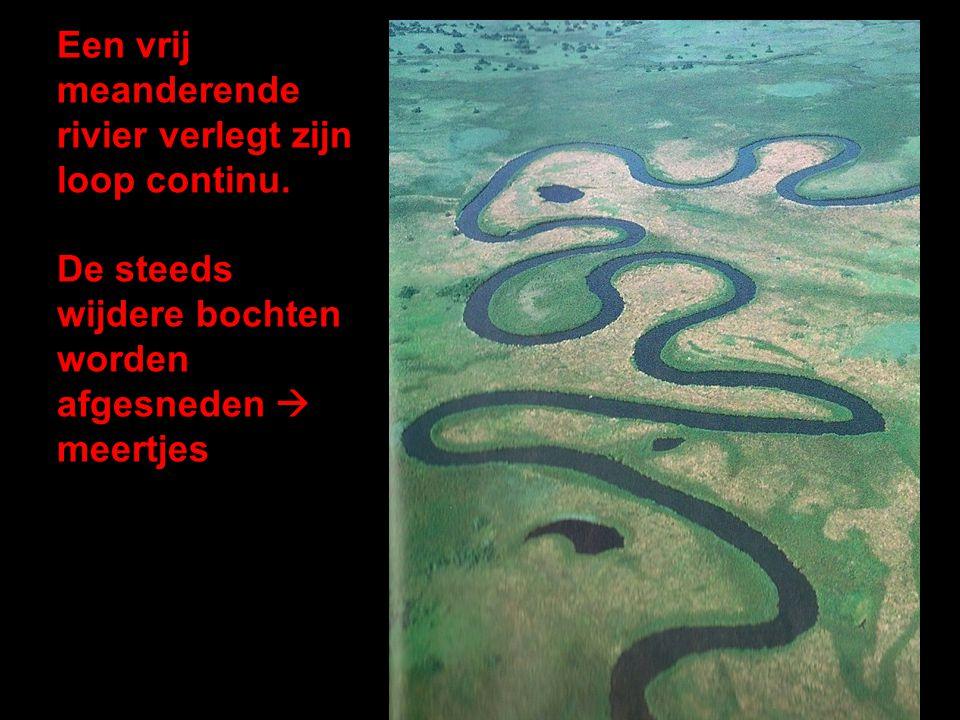 Een vrij meanderende rivier verlegt zijn loop continu. De steeds wijdere bochten worden afgesneden  meertjes