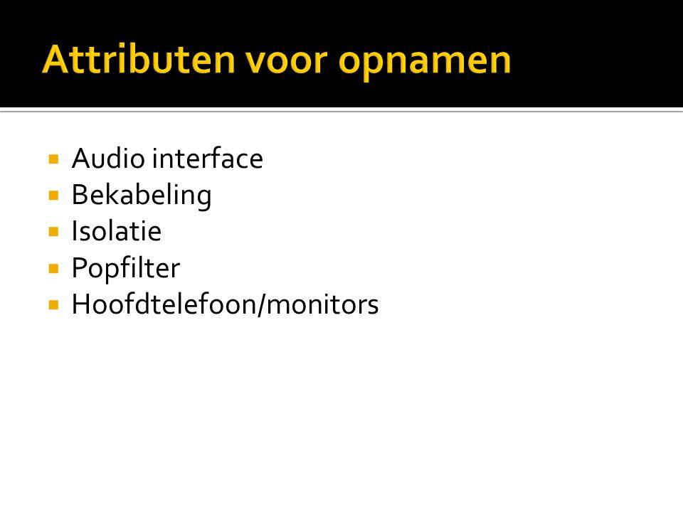 Audio interface  Bekabeling  Isolatie  Popfilter  Hoofdtelefoon/monitors