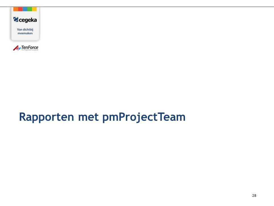 28 Rapporten met pmProjectTeam