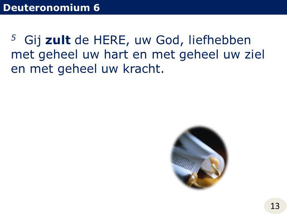 Deuteronomium 6 5 Gij zult de HERE, uw God, liefhebben met geheel uw hart en met geheel uw ziel en met geheel uw kracht.
