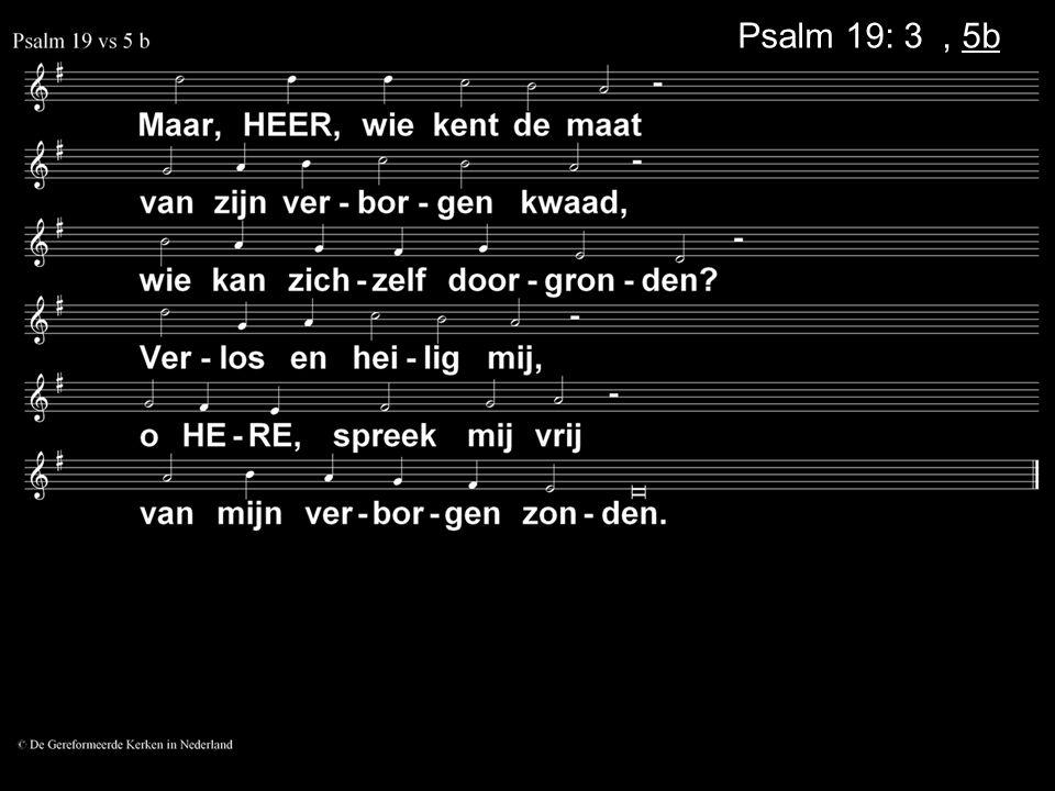 Psalm 19: 3a, 5b