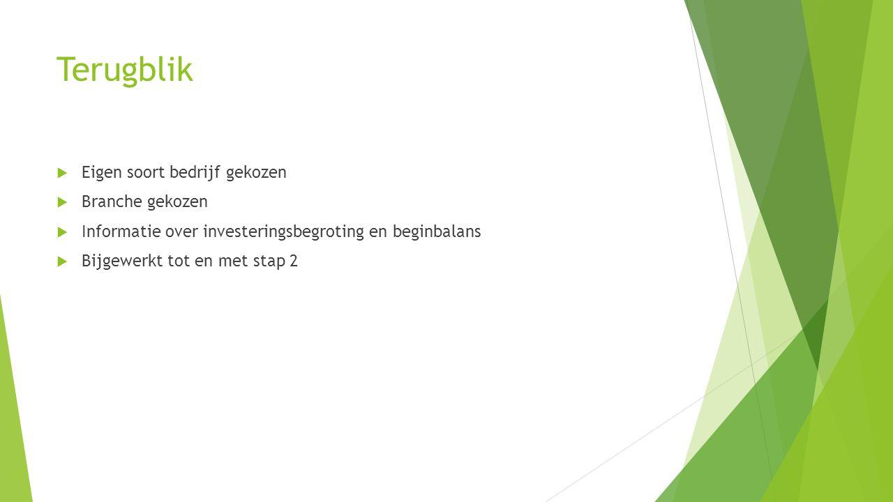 Terugblik  Eigen soort bedrijf gekozen  Branche gekozen  Informatie over investeringsbegroting en beginbalans  Bijgewerkt tot en met stap 2