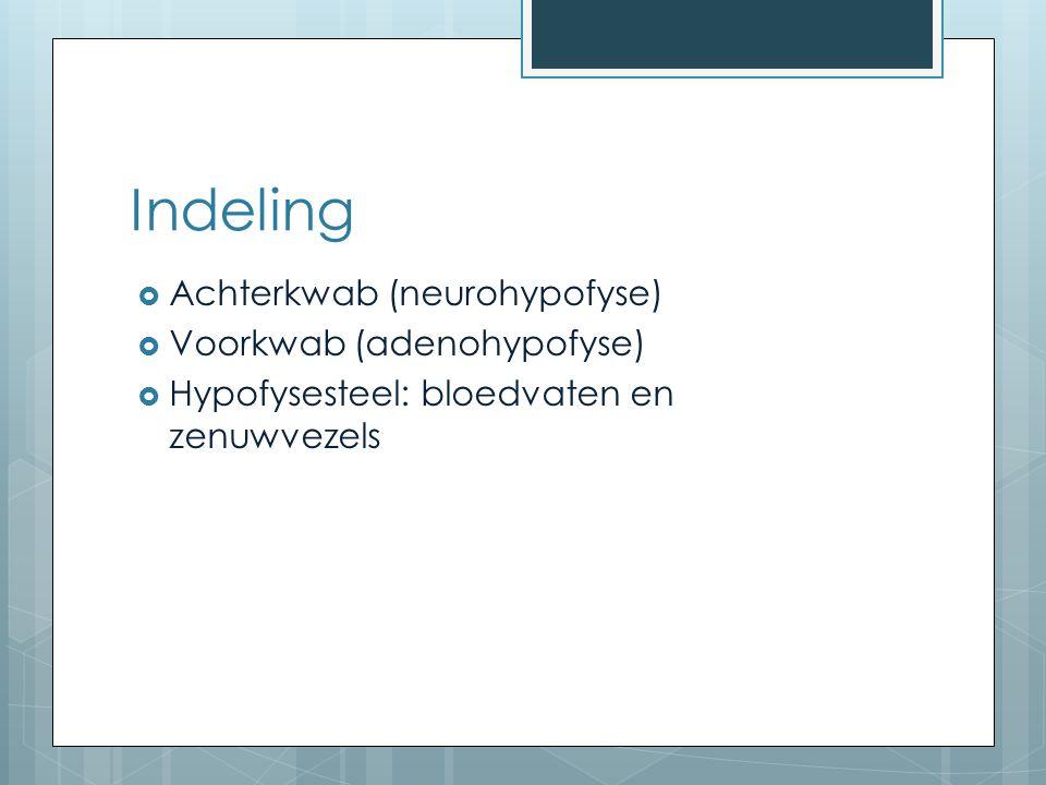 Indeling  Achterkwab (neurohypofyse)  Voorkwab (adenohypofyse)  Hypofysesteel: bloedvaten en zenuwvezels