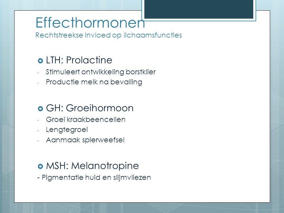 Effecthormonen Rechtstreekse invloed op lichaamsfuncties  LTH: Prolactine - Stimuleert ontwikkeling borstklier - Productie melk na bevalling  GH: Groeihormoon - Groei kraakbeencellen - Lengtegroei - Aanmaak spierweefsel  MSH: Melanotropine - Pigmentatie huid en slijmvliezen