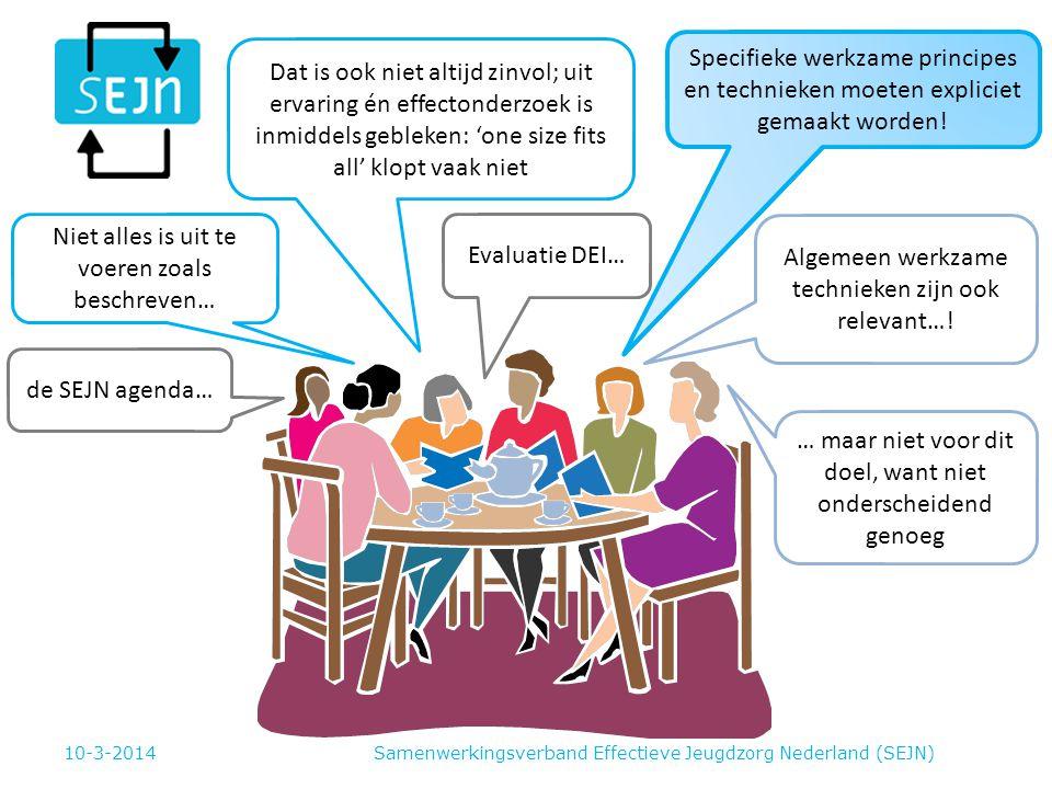 Samenwerkingsverband Effectieve Jeugdzorg Nederland (SEJN) Evaluatie DEI… de SEJN agenda… Niet alles is uit te voeren zoals beschreven… Dat is ook niet altijd zinvol; uit ervaring én effectonderzoek is inmiddels gebleken: 'one size fits all' klopt vaak niet Specifieke werkzame principes en technieken moeten expliciet gemaakt worden.