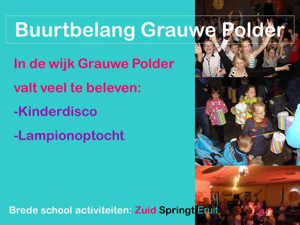 Buurtbelang Grauwe Polder In de wijk Grauwe Polder valt veel te beleven: -Kinderdisco -Lampionoptocht Brede school activiteiten: Zuid Springt Eruit
