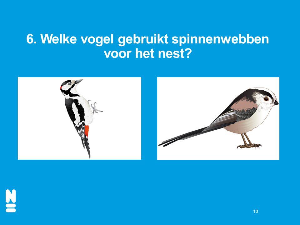 13 6. Welke vogel gebruikt spinnenwebben voor het nest?