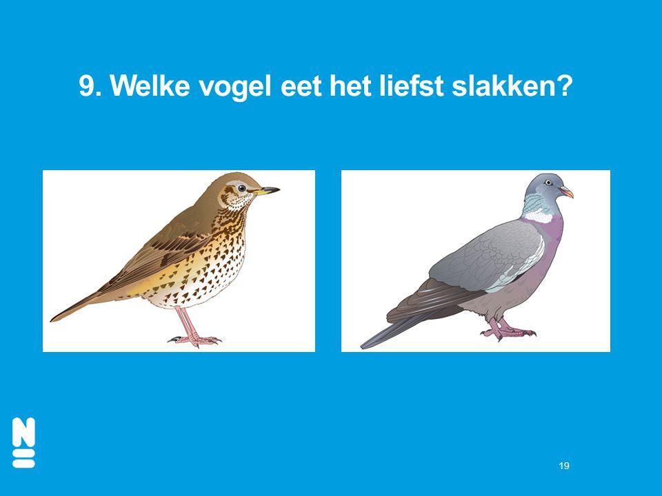 19 9. Welke vogel eet het liefst slakken?