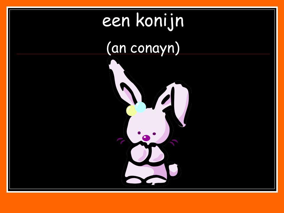 een konijn (an conayn)