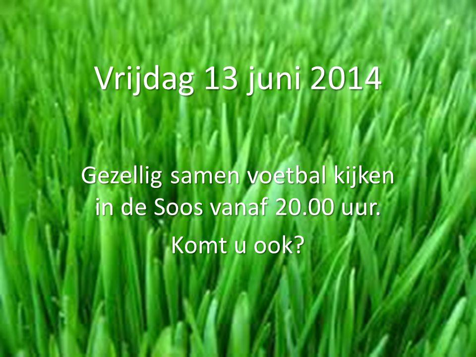 Vrijdag 13 juni 2014 Gezellig samen voetbal kijken in de Soos vanaf 20.00 uur. Komt u ook?
