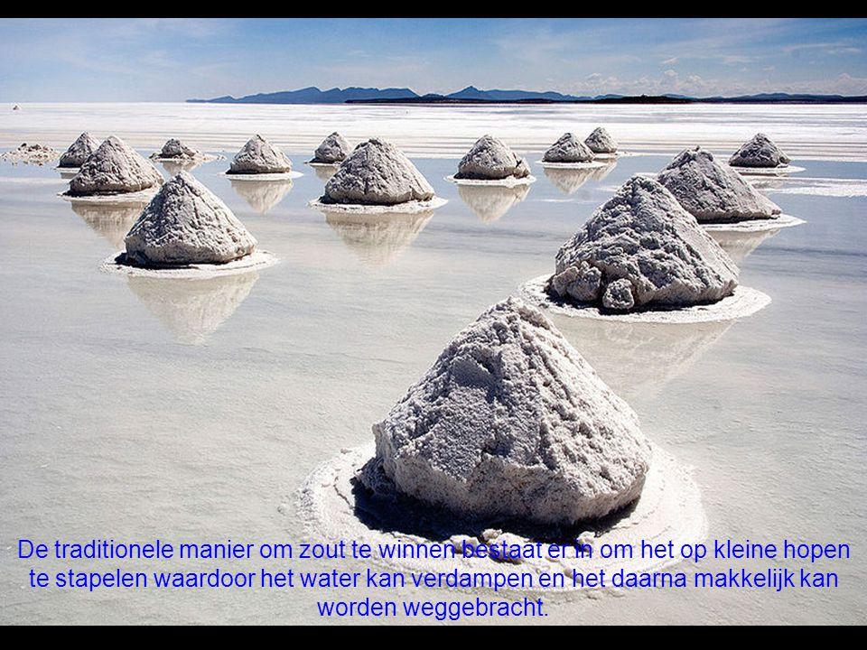 Naar schatting bevat het zoutmeer van Uyuni zowat 10 miljard ton zout, waarvan er elk jaar 25 duizend ton worden bovengehaald.