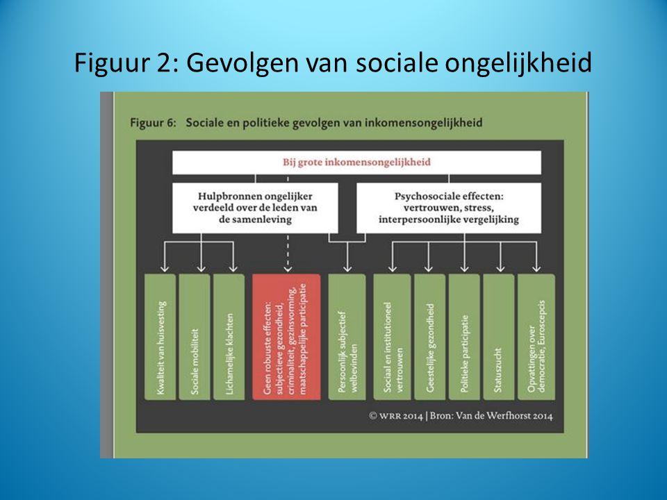 Figuur 2: Gevolgen van sociale ongelijkheid