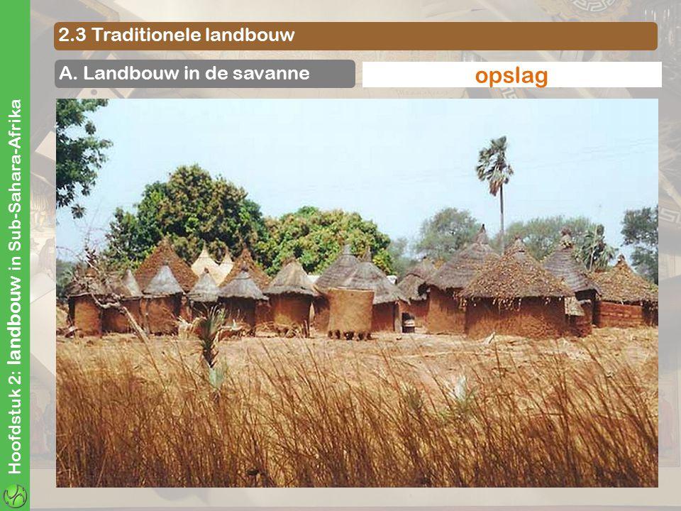 Hoofdstuk 2: landbouw in Sub-Sahara-Afrika 2.3 Traditionele landbouw A. Landbouw in de savanne brandcultuurhakbouwzaaien en plantenwieden en oogstenop