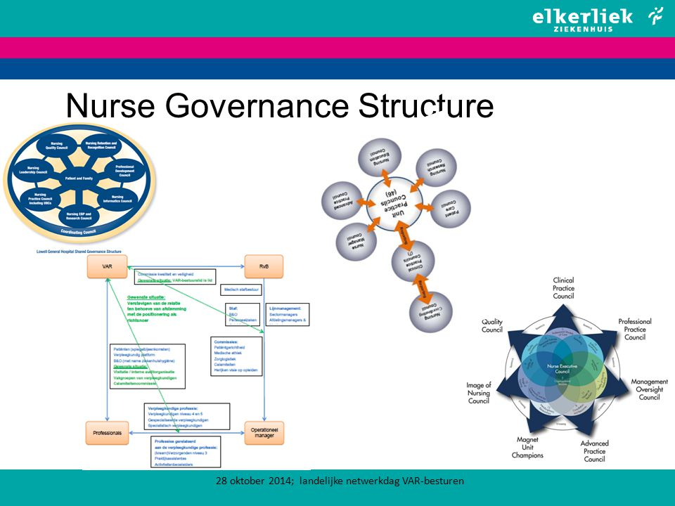 Nurse Governance Structure 28 oktober 2014; landelijke netwerkdag VAR-besturen