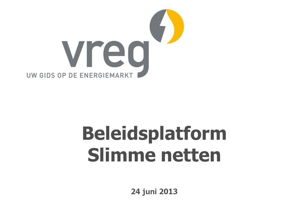 Beleidsplatform Slimme netten 24 juni 2013