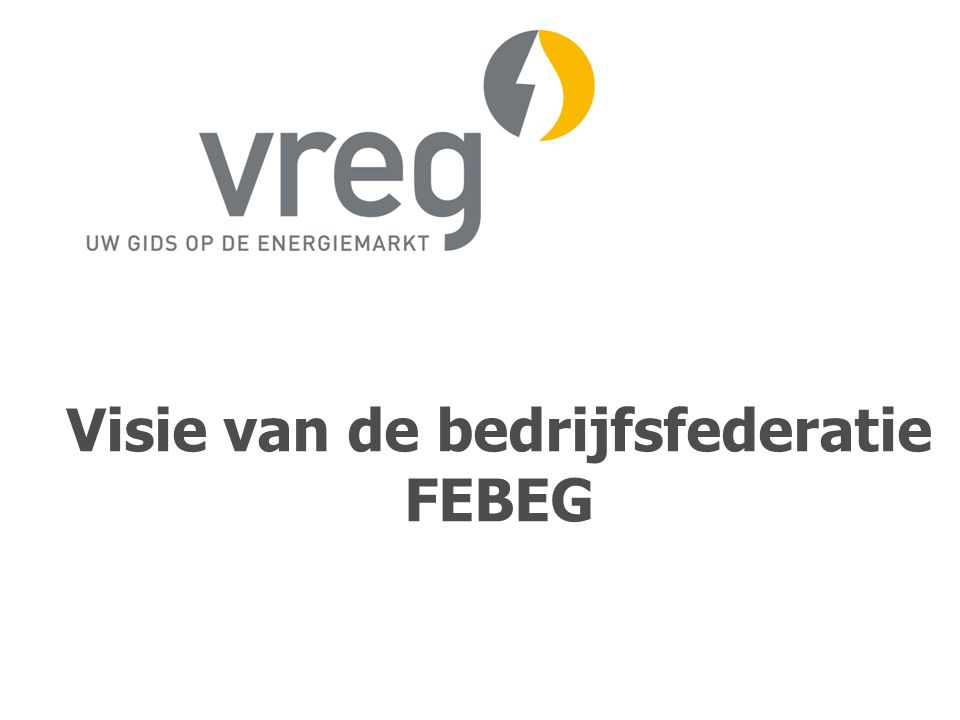 Visie van de bedrijfsfederatie FEBEG