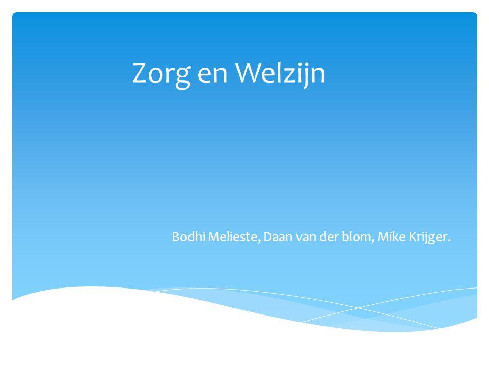 Zorg en Welzijn Bodhi Melieste, Daan van der blom, Mike Krijger.