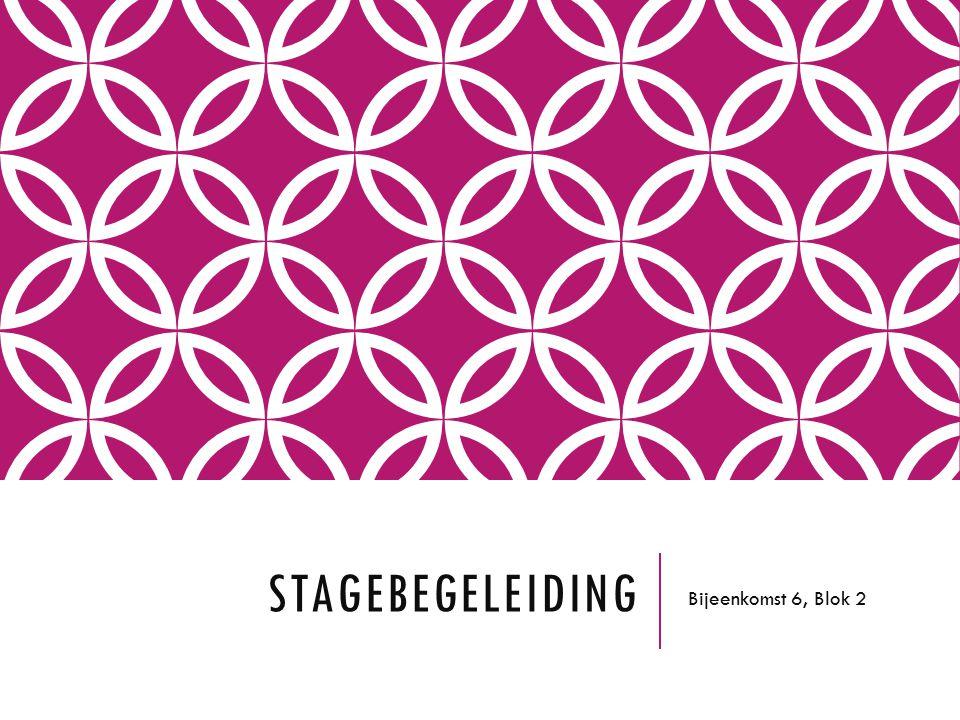 STAGEBEGELEIDING Bijeenkomst 6, Blok 2