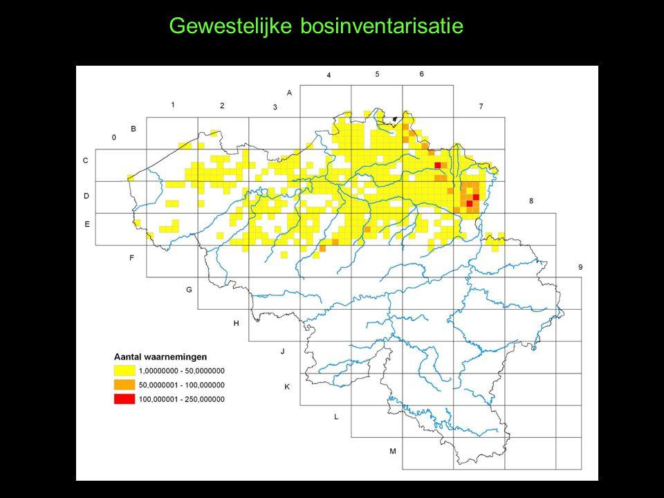 Gewestelijke bosinventarisatie